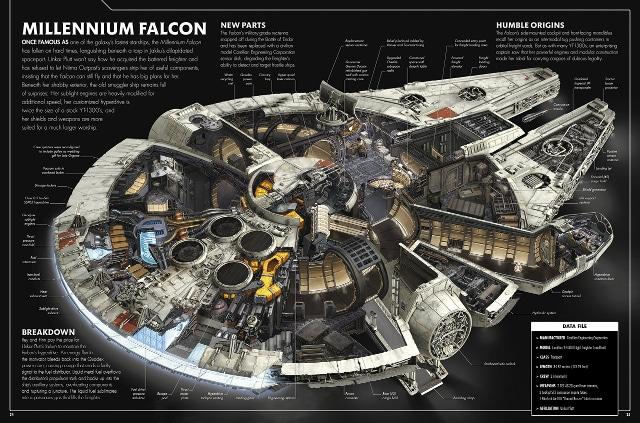 falcon-cross-section-sm